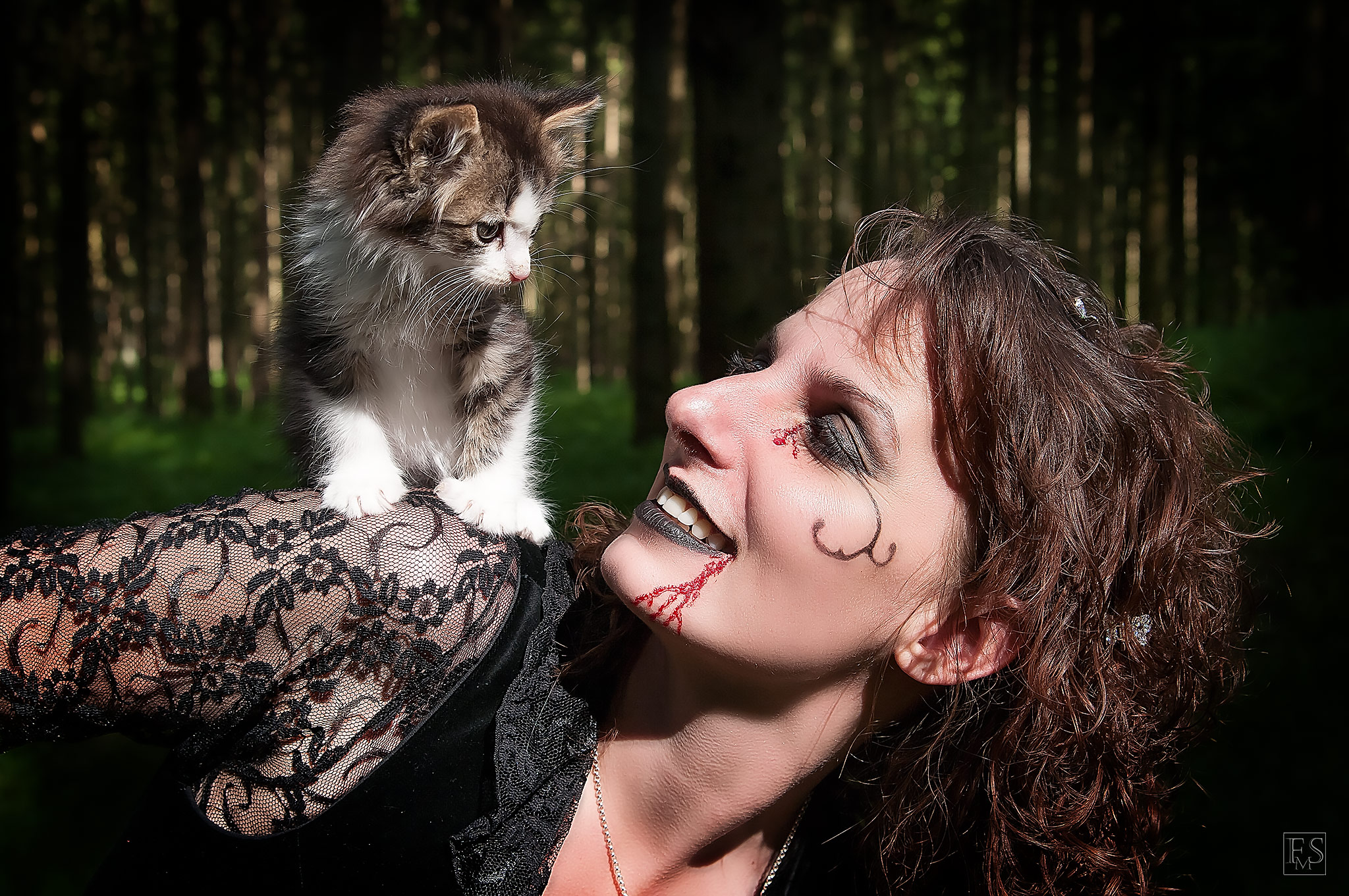 The Cat and the Witch